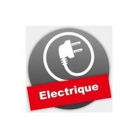 Dumper électriques